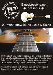 20 must-know Blues Licks & Solos Ebook Cover